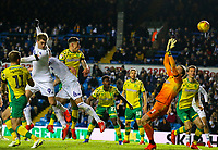 Leeds United's Patrick Bamford scores his side's first goal<br /> <br /> Photographer Alex Dodd/CameraSport<br /> <br /> The EFL Sky Bet Championship - Leeds United v Norwich City - Saturday 2nd February 2019 - Elland Road - Leeds<br /> <br /> World Copyright © 2019 CameraSport. All rights reserved. 43 Linden Ave. Countesthorpe. Leicester. England. LE8 5PG - Tel: +44 (0) 116 277 4147 - admin@camerasport.com - www.camerasport.com