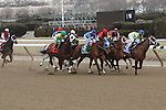 Revolutionary (#2) with Javier Castellano splits horses to win the 133rd running of the Grade 3  Withers Stakes for 3-year olds, going 1 1/16 on the inner dirt, at Aqueduct Racetrack.  Trainer Todd Pletcher.  Owner Winstar Farms