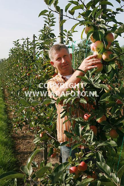Slijk Ewijk 200906 Fruitteler Henk Veens in zijn boomgaard van het nieuwe merk ?<br /> Foto Frans Ypma APA-foto