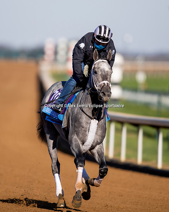 November 2, 2020: Essential Quality, trained by trainer Brad Cox, exercises in preparation for the Breeders' Cup Juvenile at Keeneland Racetrack in Lexington, Kentucky on November 2, 2020. Alex Evers/Eclipse Sportswire/Breeders Cup