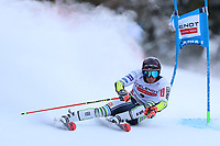 20th December 2020; Alta Badia, South-Tyrol, Italy; International Ski Federation World Cup Alpine Skiing, Giant Slalom; Zan Kranjec (SLO)