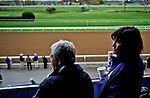 October 26, 2015 : Barbara Banke watches morning workouts as horses exercise in preparation for the Breeders' Cup in Lexington, Kentucky. Scott Serio/ESW/CSM