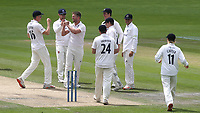 Sussex bowler, Stuart Meaker celebrates with Jack Carson after taking the wicket of Glamorgan batsman, Joe Cooke is out during Sussex CCC vs Glamorgan CCC, LV Insurance County Championship Group 3 Cricket at The 1st Central County Ground on 5th July 2021