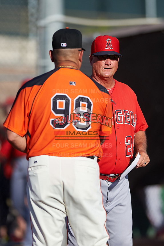 AZL Angels manager Dave Stapleton (22) meets with AZL Giants Orange manager Alvaro Espinoza (99) during the lineup exchange before an Arizona League game at Giants Baseball Complex on June 17, 2019 in Scottsdale, Arizona. AZL Giants Orange defeated AZL Angels 8-4. (Zachary Lucy/Four Seam Images)