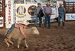 Kids cling on to sheep in little ones rodeo by Donnie Sexton