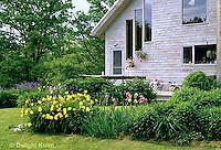 HB05-064x   English Cottage Garden - yellow day lilies, bearded iris - Hemerocallis spp, Iris spp.