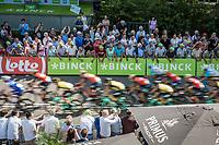 First passage peloton at the finish line.. 2 laps to go! <br /> <br /> Binckbank Tour 2017 (UCI World Tour)<br /> Stage 1: Breda (NL) > Venray (NL) 169,8km