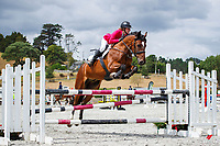CLASS 02: Welcome Horse 1.15m