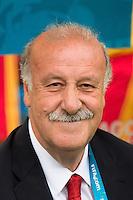 Spain manager Vicente del Bosque
