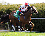 Aoril 12, 2014:  Marchman and jockey Robby Albarado win the G3 Shakertown S. at Keeneland for owner Martin Racing Stable and trainer Bret Calhoun.Jessica Morgan/ESW/CSM