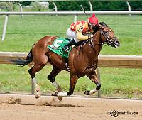 Wynns Nighthawk winning at Delaware Park on 6/8/13