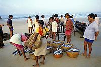 People buying fresh fish on the beach from local fishermen, Colva Beach, Goa, India.