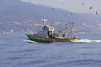 - fishing boat off the coast of San Remo<br /> <br /> - peschereccio al largo della costa di San Remo