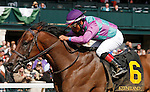 LEXINGTON, KY - APRIL 09: #6 Ami's Flatter and jockey Martin Garcia win the 30th running of The Commonwealth (Grade 3) $250,000 at Keeneland race course for owner Ivan Dalos and trainer Josie Carroll.  April 9, 2016 in Lexington, Kentucky. (Photo by Candice Chavez/Eclipse Sportswire/Getty Images)