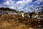 Municipal dump, Tapachula, Mexico.  ..Workers as young as five sort garbage for recyclable material.  Many workers are contracted from Guatemala to do undesirable and low wage work.