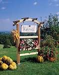 Austria, Styria, pumpkin-seed oil (sign)