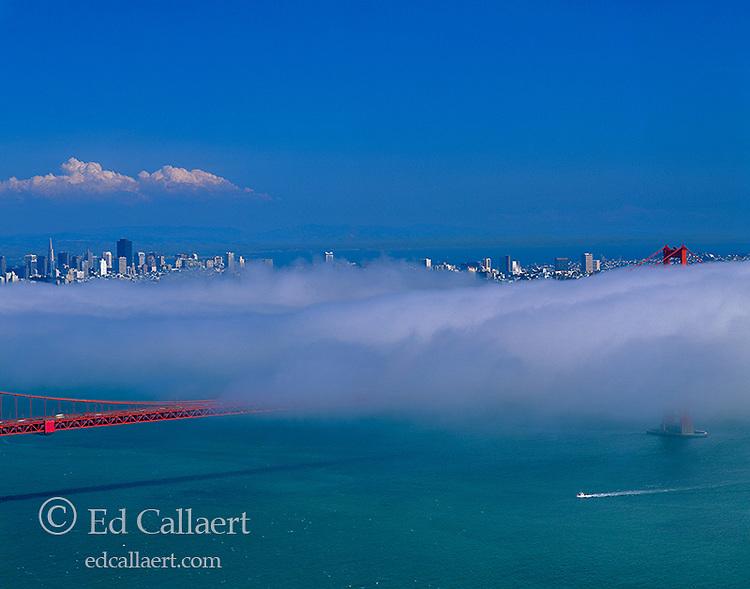 Fog Bank, Golden Gate Bridge, San Francisco, California