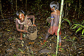 A-Ukre Village, Xingu, Brazil. Kayapo women and children collecting Brazil nuts in the forest; red and black body paint.