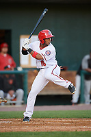 Harrisburg Senators second baseman Khayyan Norfork (15) at bat during a game against the Bowie Baysox on May 16, 2017 at FNB Field in Harrisburg, Pennsylvania.  Bowie defeated Harrisburg 6-4.  (Mike Janes/Four Seam Images)