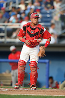 Batavia Muckdogs catcher Rodrigo Vigil (27) during a game against the Lowell Spinners on July 18, 2014 at Dwyer Stadium in Batavia, New York.  Lowell defeated Batavia 11-2.  (Mike Janes/Four Seam Images)