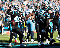 CHARLOTTE, NC - NOVEMBER 3: Dennis Daley #65 of the Carolina Panthers spikes the ball after a touchdown during a game between Tennessee Titans and Carolina Panthers at Bank of America Stadium on November 3, 2019 in Charlotte, North Carolina.