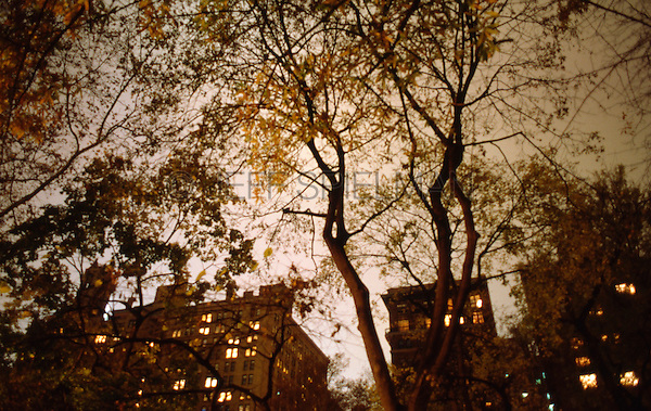 AVAILABLE DIRECTLY FROM JEFF AS A FINE ART PRINT<br /> <br /> AVAILABLE FROM GETTY IMAGES FOR COMMERCIAL AND EDITORIAL LICENSING.....Please search for image # 10149867 on www.gettyimages.com<br /> <br /> Upward View of Trees and Buildings in Gramercy Park on an Overcast Autumn Night, New York City, New York State, USA..