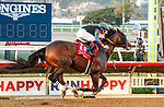 """DEL MAR, CA  AUGUST 28 :  #1 Ginobili, ridden by Drayden Van Dyke, wins the Pat O'Brien Stakes (Grade ll) Breeders Cup """"Win and You're In"""" Dirt Mile Division on August 28, 2021 at Del Mar Thoroughbred Club in Del Mar, CA.(Photo by Casey Phillips/Eclipse Sportswire/CSM)"""