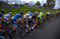 Stage Four - Te Piki - The Climb. 2019 Grassroots Trust NZ Cycle Classic UCI 2.2 Tour from Cambridge, New Zealand on Saturday, 26 January 2019. Photo: Dave Lintott / lintottphoto.co.nz
