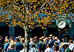 LEXINGTON, KENTUCKY - APRIL 08: Fans gather by the paddock on Blue Grass Stakes Day at Keeneland Race Course on April 8, 2017 in Lexington, Kentucky. (Photo by Scott Serio/Eclipse Sportswire/Getty Images)
