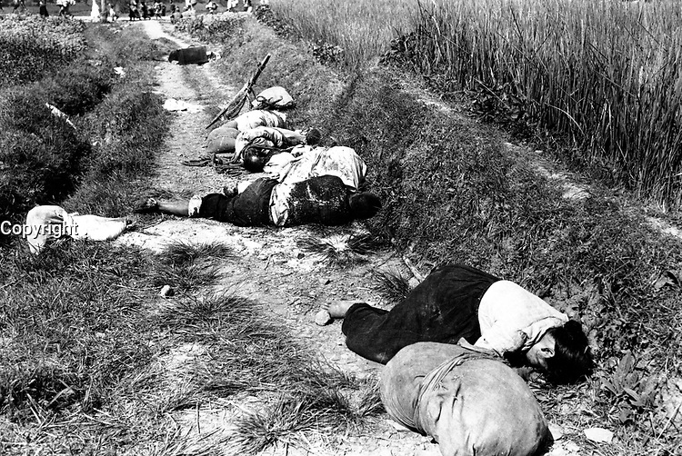 Korean civilians fleeing from the North Korean forces, killed when caught in the line of fire during night attack by guerrilla forces near Yongsan.  August 25, 1950.  Cpl. Ingram. (Army)<br /> NARA FILE #:  111-SC-347020<br /> WAR & CONFLICT BOOK #:  1507