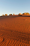 Red sand dunes off the Oodnadata Track part of the Anna Creek cattle station.