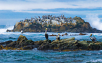 """MONTEREY MARITIME MEETING""<br />