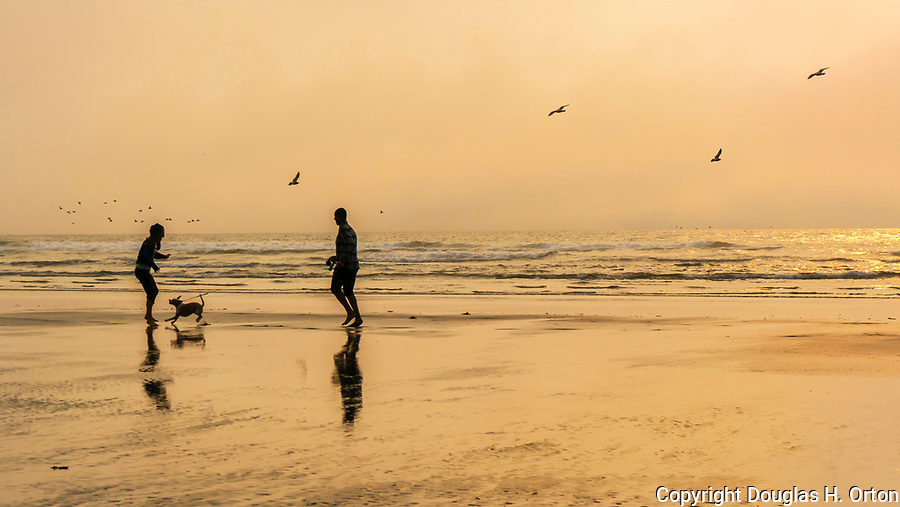 Two people play with dog, Kalaloch Beach in Olympic National Park, Washington.  Beaches in the Kalaloch area of Olympic National Park, identified by trail numbers, are remote and wild.  Olympic Peninsula, Olympic Mountains, Olympic National Park, Washington State, USA.
