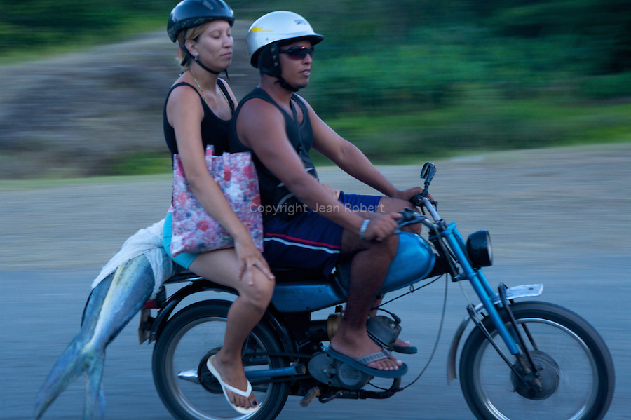 motorbike and fresh fishes near baracoa