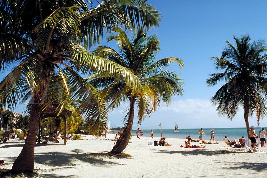 George Smathers Beach on Key West, in the Florida Keys. seascape, palm trees. Key West Florida, Florida Keys.