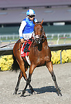August 8th 2010: J P's Gusto and Patrick Valenzuela win the Best Pal Stakes(GII) at Del Mar Race Track in Del Mar CA.