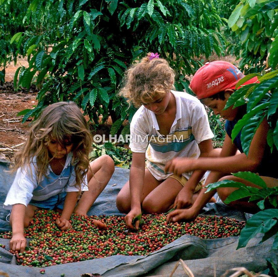 Trabalho infantil em Nova California, Acre. 1998. Foto de Ricardo Azoury.
