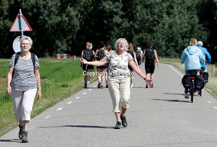 Foto: VidiPhoto<br /> <br /> LENT – Enkele duizenden wandelaars maken dinsdag vrolijk gebruik van de officiële Vierdaagseroute over de dijk tussen Oosterhout en Lent. Hoewel de Vierdaagse van Nijmegen dit jaar vanwege de coronacrisis niet doorgaat, wordt er door de Koninklijke Wandel Bond Nederland wel een alternatieve vierdaagse wandeltocht georganiseerd, waarbij iedereen zijn eigen looproute en afstand kan bepalen. Veel wandelaars kozen toch voor de route van de officiële vierdaagse die traditioneel de eerste dag door de Betuwe gaat. Om grote drukte te vermijden liepen veel wandelaars de route in een andere volgorde. Onder andere op de lange tijd tussen Oosterhout en Lent kwamen ze elkaar -en andere weggebruikers- tegen.
