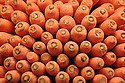 Carrots at market stacked up for display