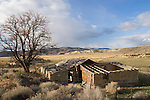 The old west, U.S.A., America, Nevada, Reese River Valley, Lander County, Highway 305 South, Abandoned ranch, Western high desert,