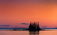Small coastal island with spruce trees, Port Clyde, Maine, USA