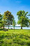 Deutschland, Bayern, Oberbayern, Rosenheimer Land, (Chiemgau), bei Rosenheim: Blick ueber den Simssee in die Chiemgauer Alpen | Germany, Upper Bavaria, Rosenheimer Land, (Chiemgau), near Rosenheim: view across lake Simssee, at background Chiemgau Alps