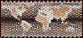 Kim, ANIMALS, REALISTISCHE TIERE, ANIMALES REALISTICOS, fondless, photos,+Montage of 592 cat head shots, in a mosaic of hexagons, forming a map of the world,++++,GBJBWP45272,#a#, EVERYDAY