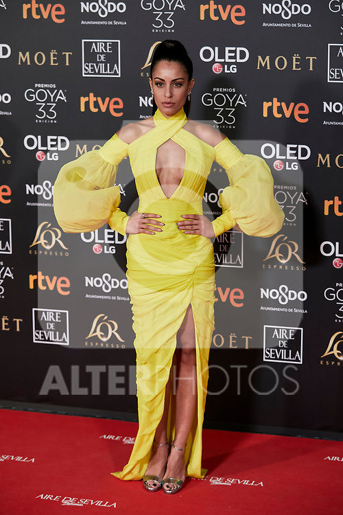 Hiba Abouk attends to 33rd Goya Awards at Fibes - Conference and Exhibition  in Seville, Spain. February 02, 2019. (ALTERPHOTOS/A. Perez Meca)