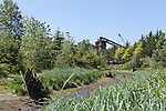 In an area marked as Habitat Restoration, an old industrial tank stands along a Duwamish River backwater.  The Duwamish River Superfund Site was designated by the EPA (Environmental Protection Agency) in 2001.  Polution includes  Pcb's,  lead, mercury, arsenic, sewage, and other chemicals.