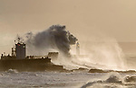 "Pictured:  The waves forming the shape of a lion<br /> <br /> A sea horse, wolf and lion appeared in blasts of spray as huge waves crash against a pier.  As the storm raged, giant walls of water battered the coastline and erupted in clouds above the pier, forming shapes of animals in the mist.<br /> <br /> Stephen Grant, 60, who lives in Porthcawl, Wales, with his wife Kath, caught all the images on the same morning in the seaside town.  He said: ""Storms occur throughout the year especially when the winds are blowing south-south westerly with gusts reaching up to 30mph to 40mph that cause big swells, throwing the waves over the pier, peaking at times to 20ft to 30ft high.  SEE OUR COPY FOR DETAILS.<br /> <br /> Please byline: Stephen Grant/Solent News<br /> <br /> © Stephen Grant/Solent News & Photo Agency<br /> UK +44 (0) 2380 458800"