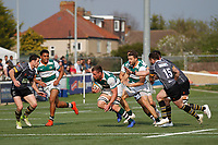 Rayn Smid of Ealing Trailfinders during the Greene King IPA Championship match between Ealing Trailfinders and Nottingham Rugby at Castle Bar , West Ealing , England  on 30 March 2019. Photo by Carlton Myrie.