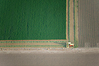 Tractor on field, Pueblo County, Colorado. June 2011