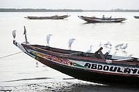 SENEGAL, Casamance, Ziguinchor, fishing port, heron on wooden boat / Fischereihafen, Reiher auf Holzboot