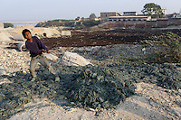 A child worker pulls discarded leather trimmings discarded from local tanneries. The waste is laced with toxins produced in the tanning process. The city is notorious for having some of the country's worst pollution which is created by the local leathery tannery industry.